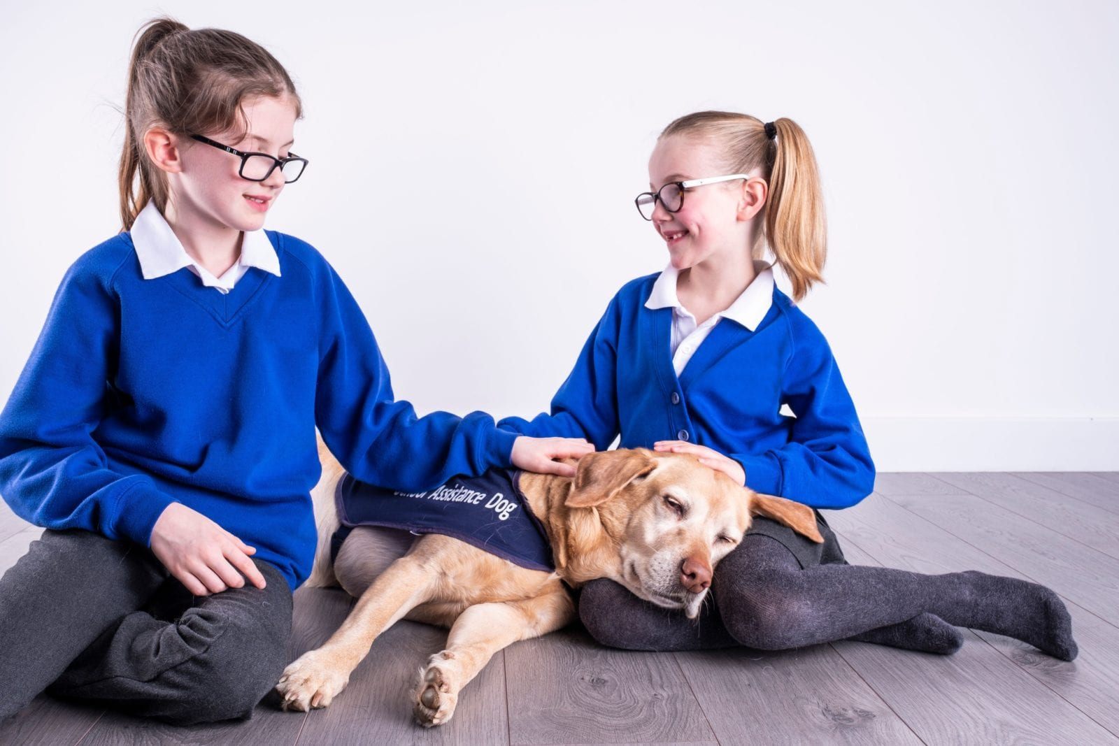 School pupils with a relaxed CAL dog - www.canineassistedlearning.com