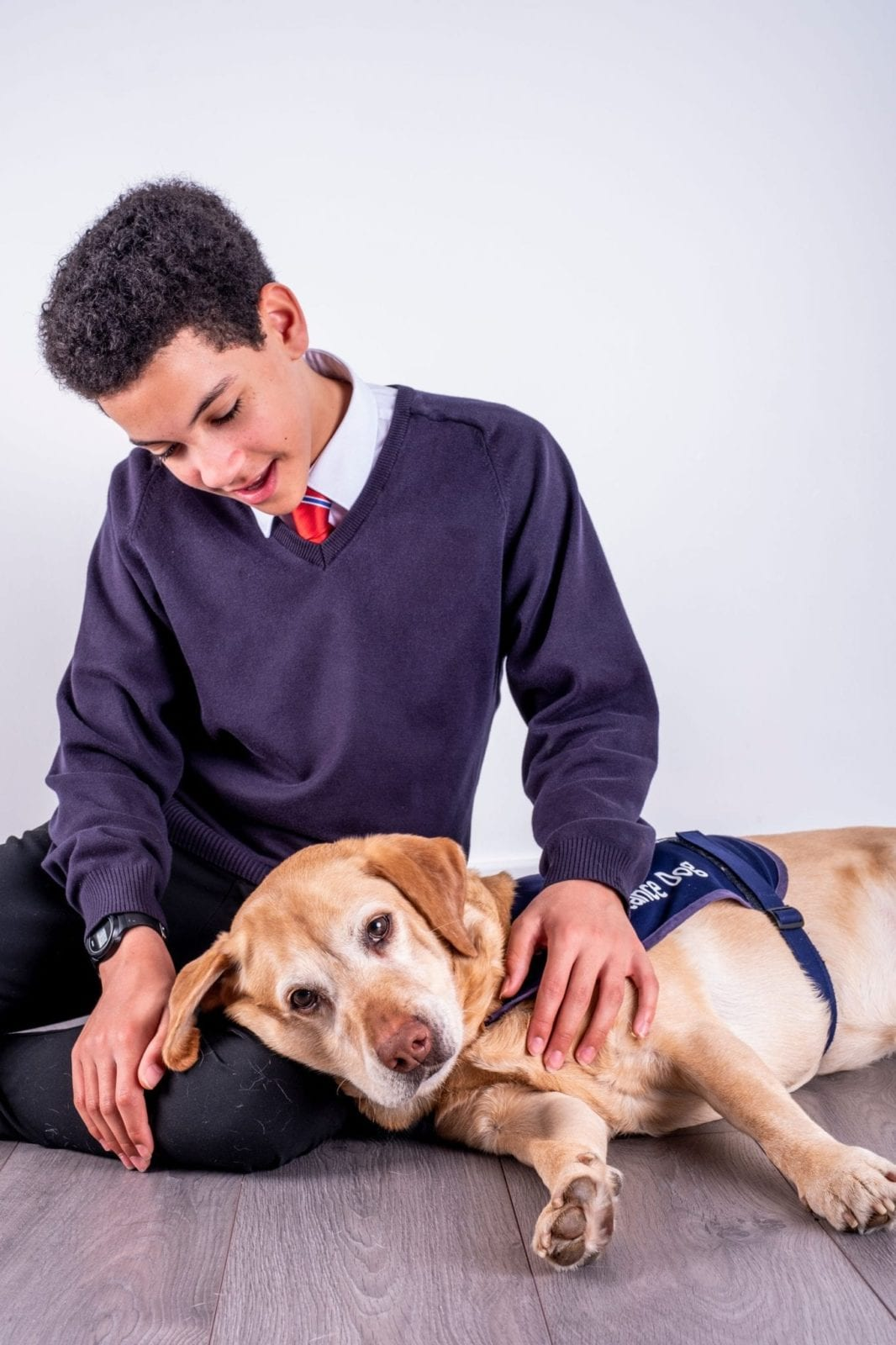 School pupil with a CAL dog - www.canineassistedlearning.com